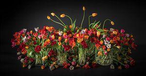 La nature morte des tulipes sur Dirk Verwoerd