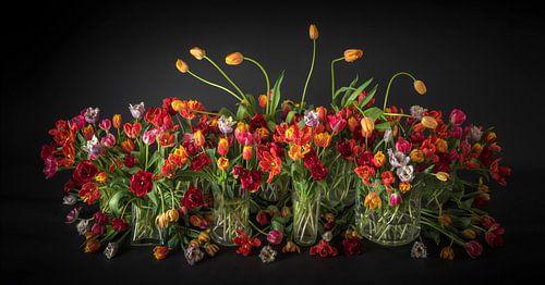 La nature morte des tulipes