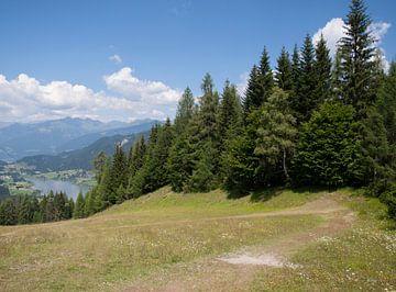 Uitzicht op Weissensee, Oostenrijk van Rinke Velds
