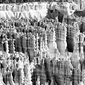 Bryce Canyon USA panorama Zwart Wit van Lieke Doorenbosch