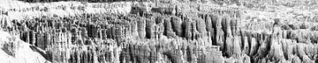 Bryce Canyon USA panorama Zwart Wit von Lieke Doorenbosch