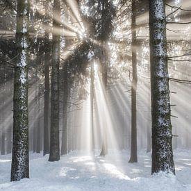 Überwältigend Winterlandschaft von Lars van de Goor