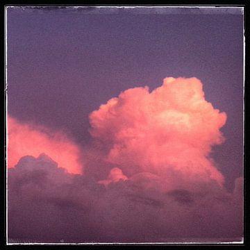 Roze wolk van Kuba Bartyński