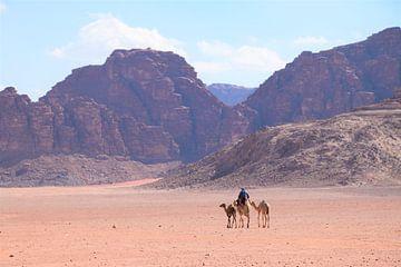Kamelen in woestijn van Petra Kooiman