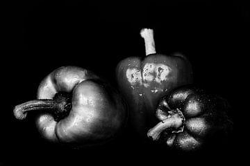 Stillleben drei Paprika auf schwarz in schwarz-weiss nebeneinander mit Wassertropfen von Dieter Walther