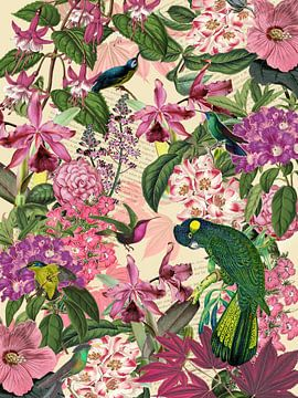 Der grüne Kakadu und seine Freunde von christine b-b müller