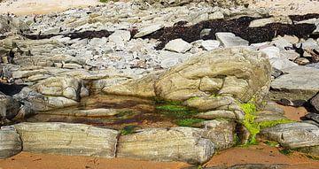 'Trol op Gouden strand' van Erna Kampman