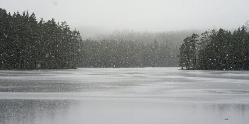 Sneeuw in zwart wit van Marloes van Pareren