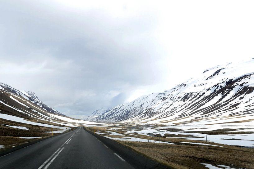 Ringweg 1, noordoost IJsland van Fleur Halkema