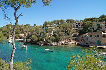 Mallorca von Martina Fornal