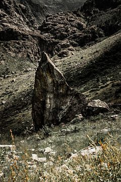 Puntige rots van Tom Paquay