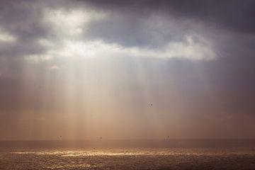 Das letzte bisschen Sonne. von Yvonne van Leeuwen