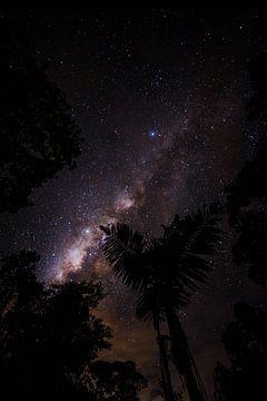 Counting stars von Jip Leermakers