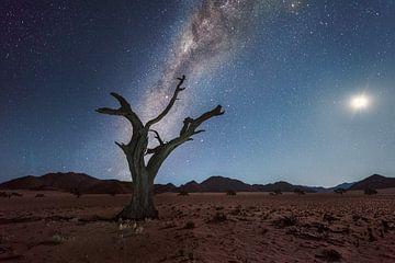 Melkweg Namibie van Peter Poppe