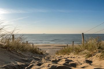 Zeezicht van af de duinen van Peter Sneijders