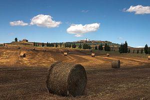 Hooirollen in het Toscaanse landschap bij Pienza van