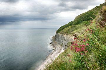 De kust van Normandie van Mark Bolijn