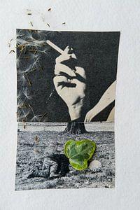 dont smoke van Karin vanBijleveltFotografie