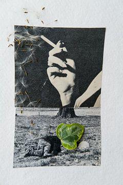 nicht rauchen von Karin vanBijleveltFotografie