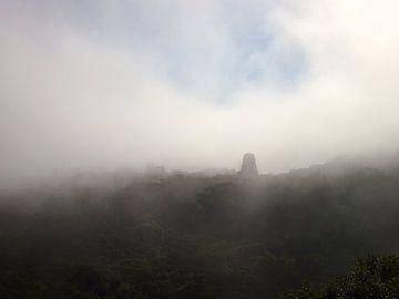 Nebel in Tikal van Patrick Hundt