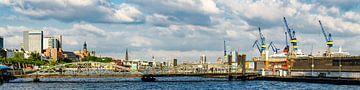 Panorama haven van Hamburg met aanlegsteigers, droogdokken en kranen van Dieter Walther