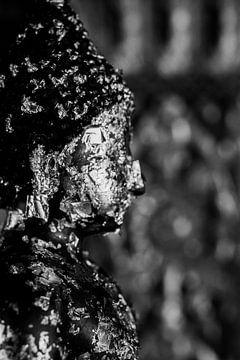 Buddha in zwartwit von Laurien Blom