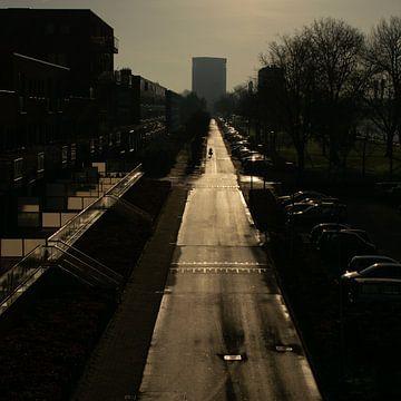 Habe die Straße ganz für mich allein in Utrecht Süd von Bart van Lier