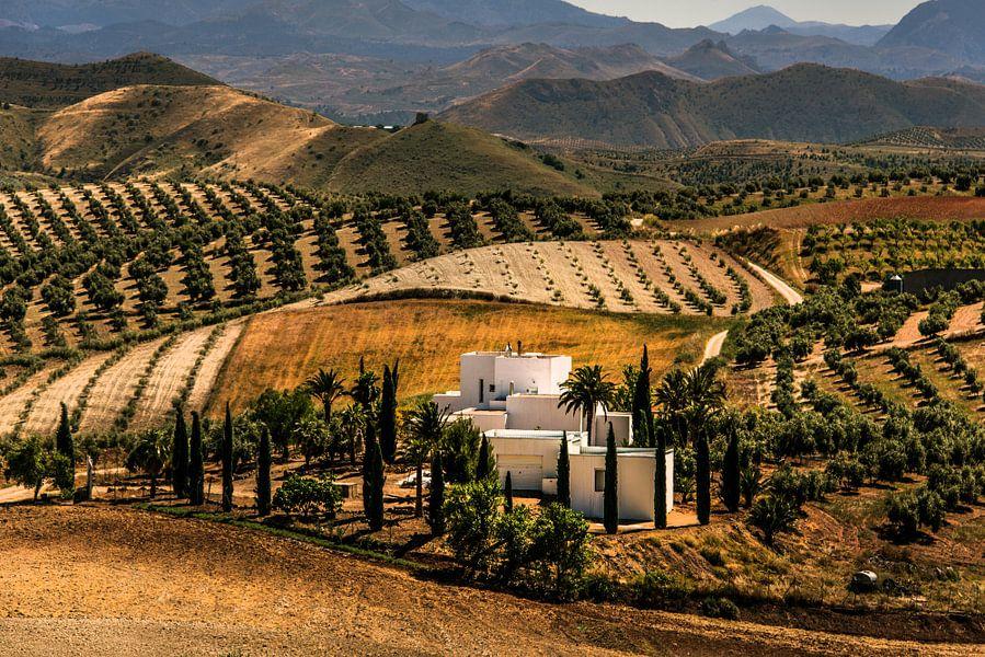 Andalucia van Harrie Muis