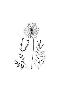 Poster bloem - zwart en wit - nature van Studio Tosca