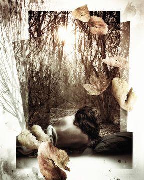 Gorzen 01 van Mark Isarin | Fotografie