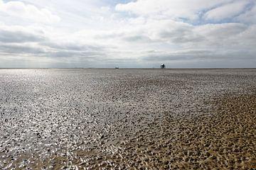 Vergezicht over de Waddenzee bij eb. van