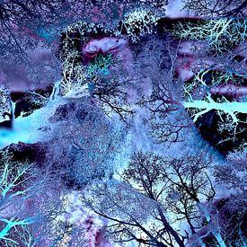 Mein Leben im Blauen Busch der Geister van Silva Wischeropp