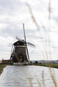 Vieux moulin hollandais sur HappyTravelSpots