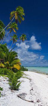 Honeymoon Island, Aitutaki - Cook Islands van