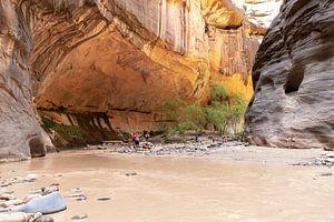 Zion National Park van Ton Tolboom