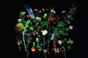 Blumenporträt (Mischmasch) von Ineke VJ