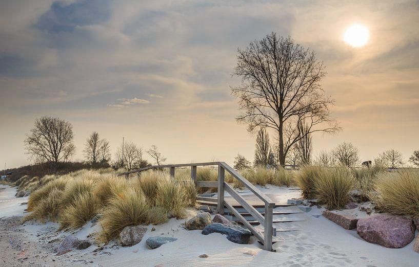 Ostseeromantik von Werner Reins