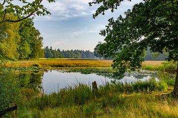 See während eines morgendlichen Spaziergang. von Marcel Pietersen