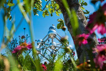 Atomium von lisa dumon