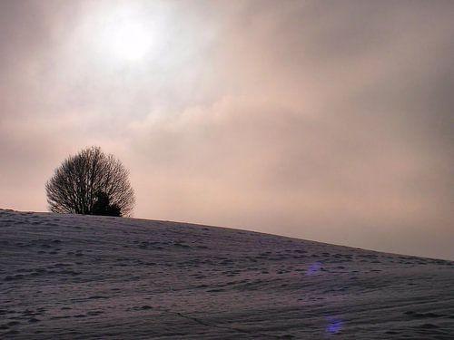 Winter 02 von