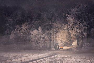 Ein heißes Feuer an einem kalten Abend von Elianne van Turennout