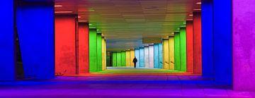 Het Nieuwe Instituut, Rotterdam van