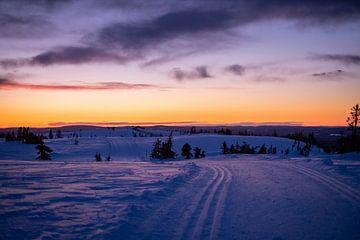 Sonnenaufgang in Norwegen von Annika Koole