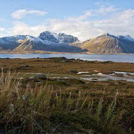 View from Vestvågøy von Jaco Verpoorte