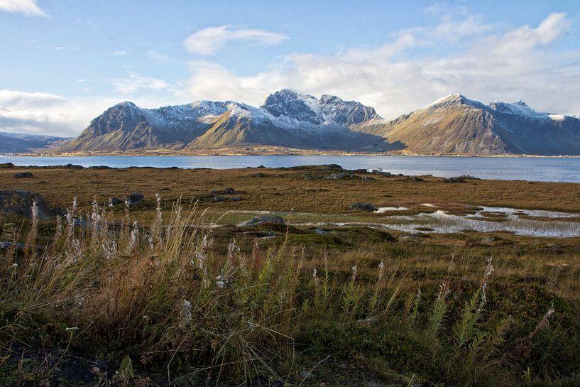 View from Vestvågøy van Jaco Verpoorte