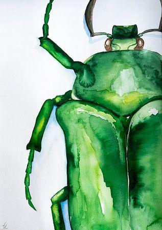 Aquarel Kever van Lianne Landsman