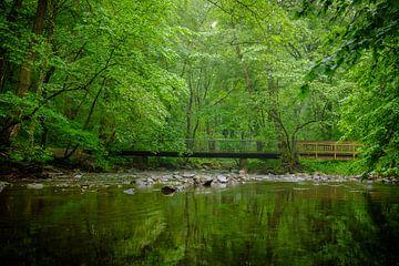 Brücke über ruhigem Gewässer von Emel Malms