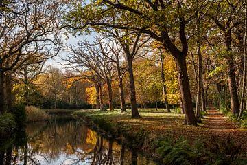 Herfst op Walcheren van Mario Lere