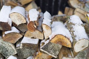 Haardhout in de sneeuw van KO- Photo