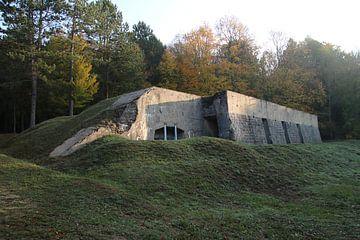 Bunker van matthijs iseger